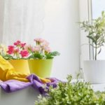 Mode d'emploi : comment déclarer sa femme de ménage ?