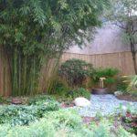Quelles sont les précautions à prendre avant de planter du bambou dans son jardin ?