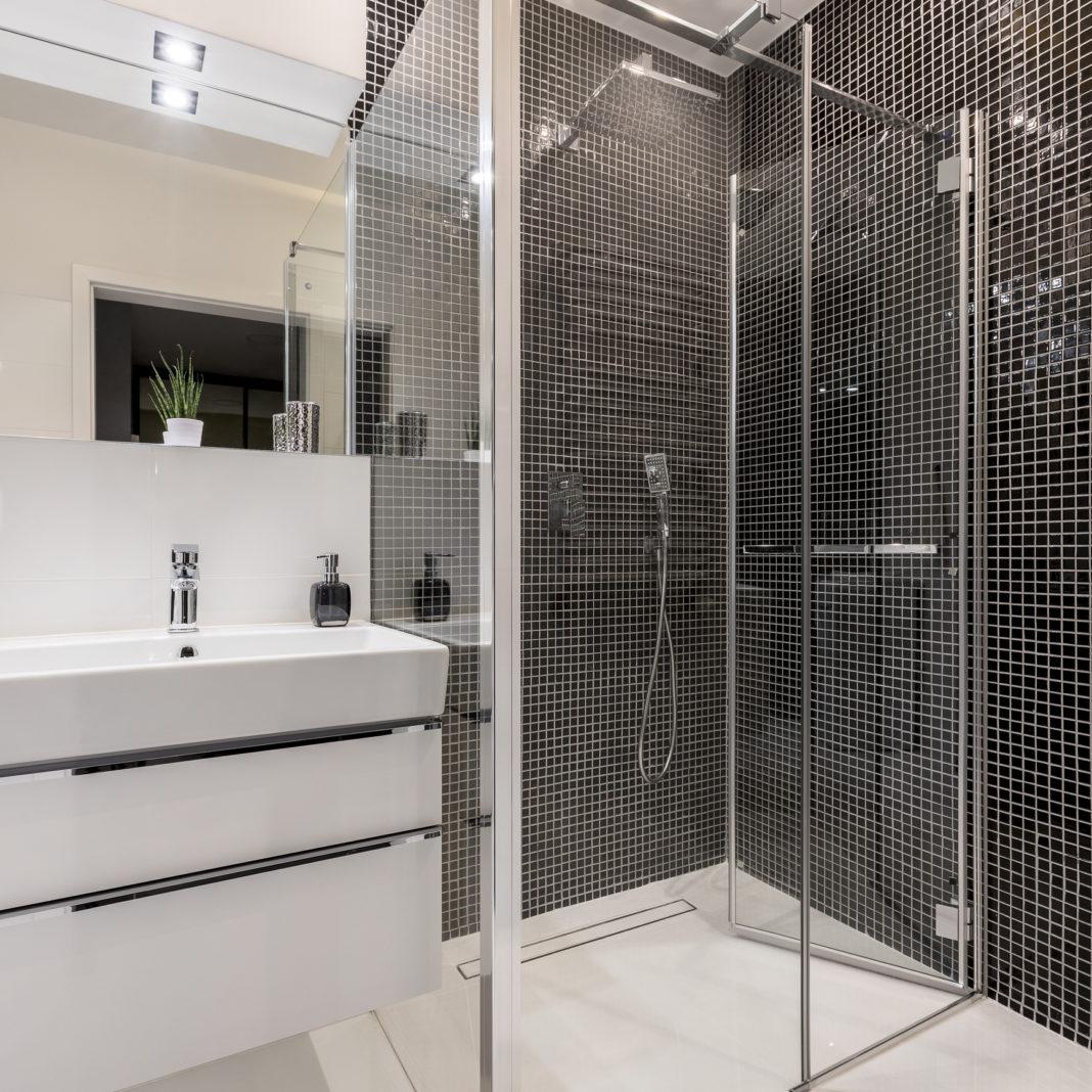 Une douche dans une salle de bain