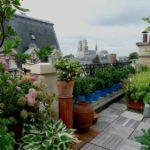 Sondage : les jardins ou les toits-terrasses sont particulièrement plébiscités par les Français