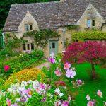Tendance du moment : comment concevoir un jardin à l'anglaise ?