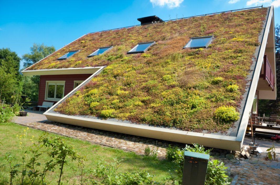toiture végétale sur maison rouge