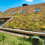 L'avenir de la toiture est-il un mix végétalisé et solaire ?