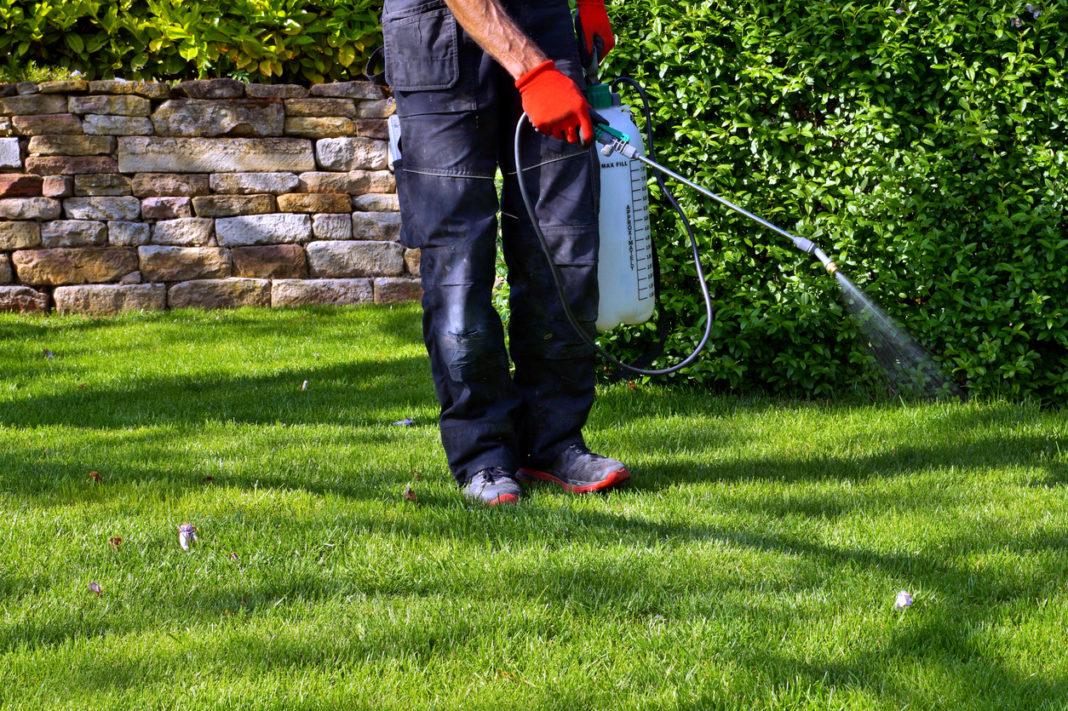 paysagiste qui arrose le jardin
