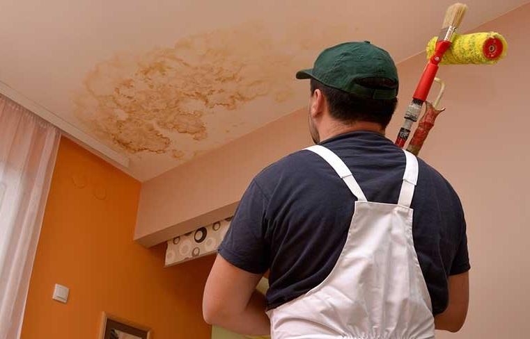 Peintre qui regarde un plafond humide