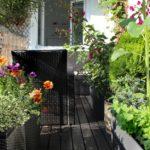 Confinement et jardinage : comment préparer son jardin de balcon à l'hiver ?