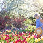 Saison printanière 2021 : comment prendre soin de son jardin ?